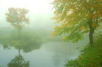 Autumn Fog Otter Millers Rivers Birch Hill