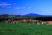 Templeton farm and Mount Monadnock view