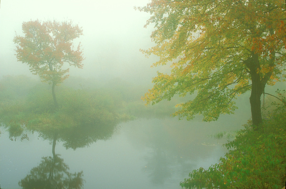 Autumn Fog Otter and Millers Rivers Birch Hill