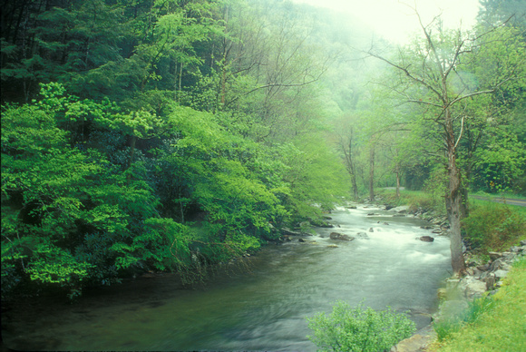 Little River Smoky Mountains