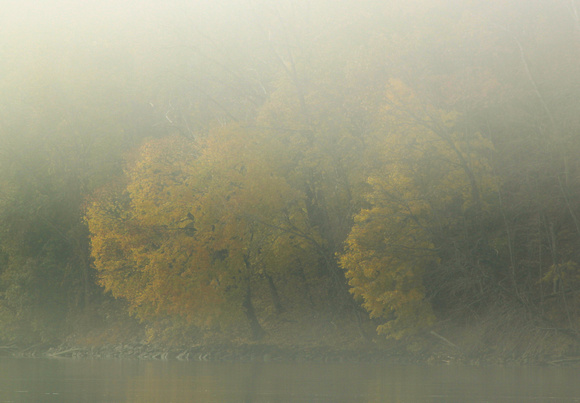Barton Cove Connecticut River Late Autumn Fog