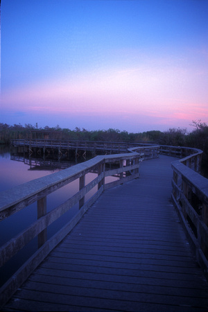 Anningha Trail Boardwalk