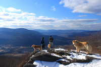 Hikers and Dogs Savoy Mountain Spruce Hill Berkshires